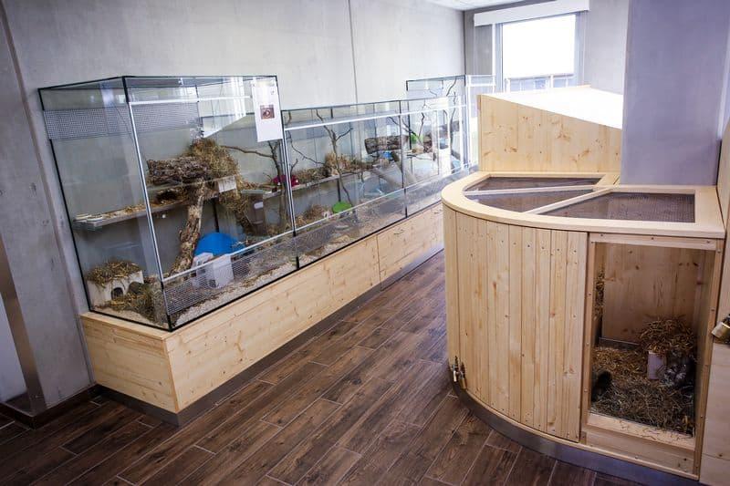 Das Foto zeigt den Kleintierbereich im TierQuarTier Wien.
