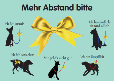 """""""Gelber Hund"""" – Wenn Hunde mehr Abstand brauchen"""