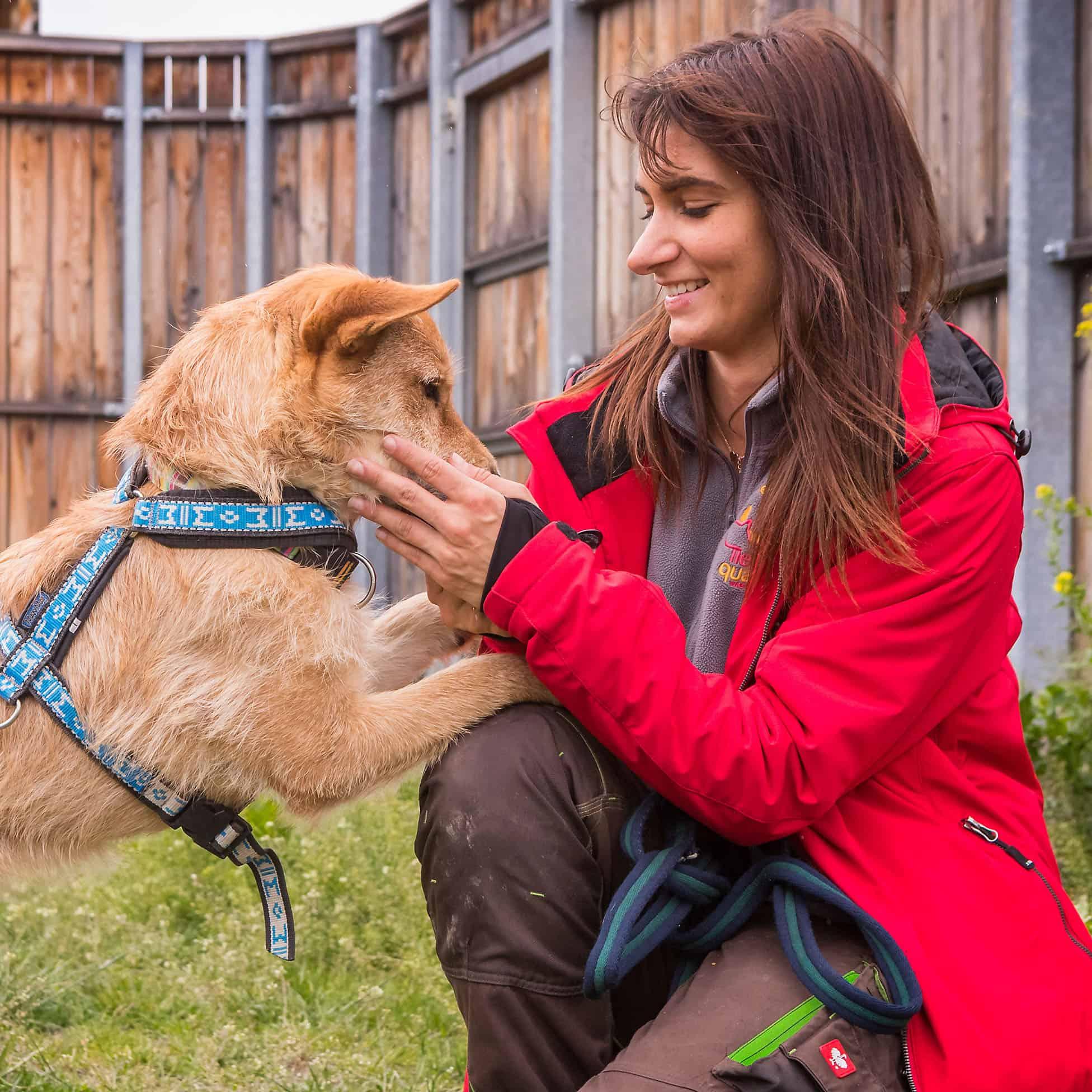 Eine Tierpflegerin sitzt mit einem Hund auf der Wiese.