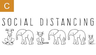 Ein Hund und eine Katze stehen nebeneinander - dazwischen befinden sich Babyelefanten.