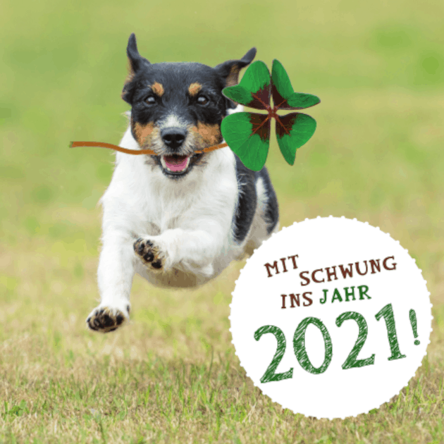 Tierische Freundschaft fürs ganze Jahr - Jahreskalender 2021