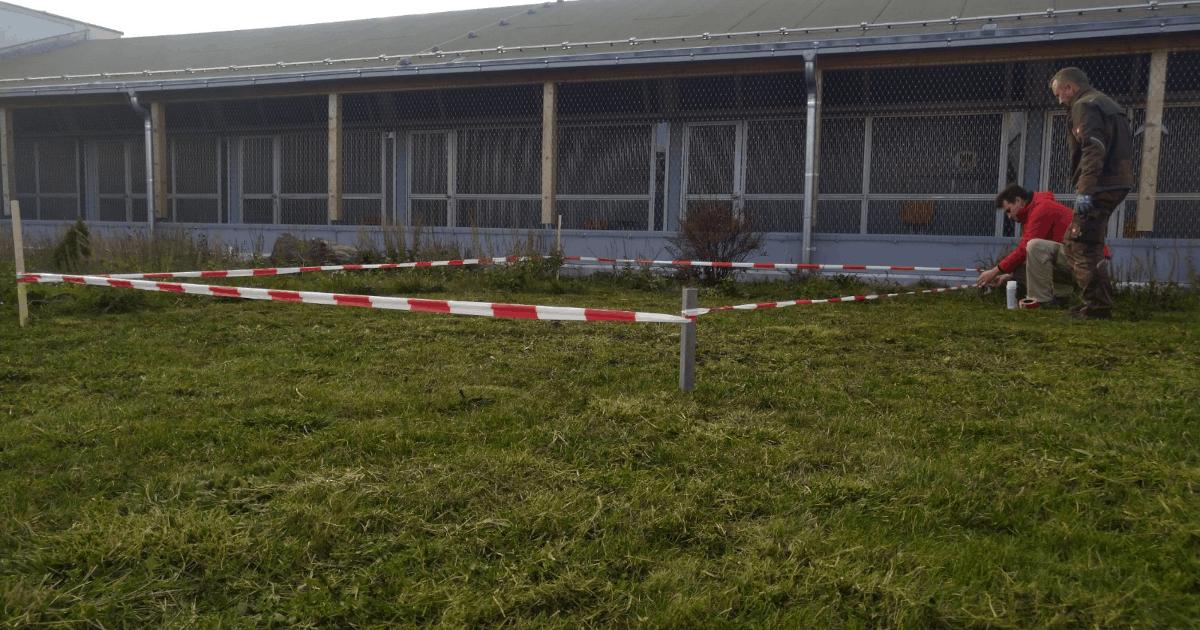 Bauphase vom Außengehege und der Behausung für unsere Kaninchen.