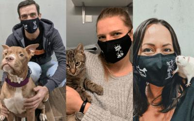 Coole TierQuarTier Wien-Masken per Versand bestellen
