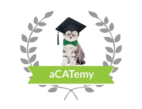 Die neue aCATemy Katzen-App von Petra Ott