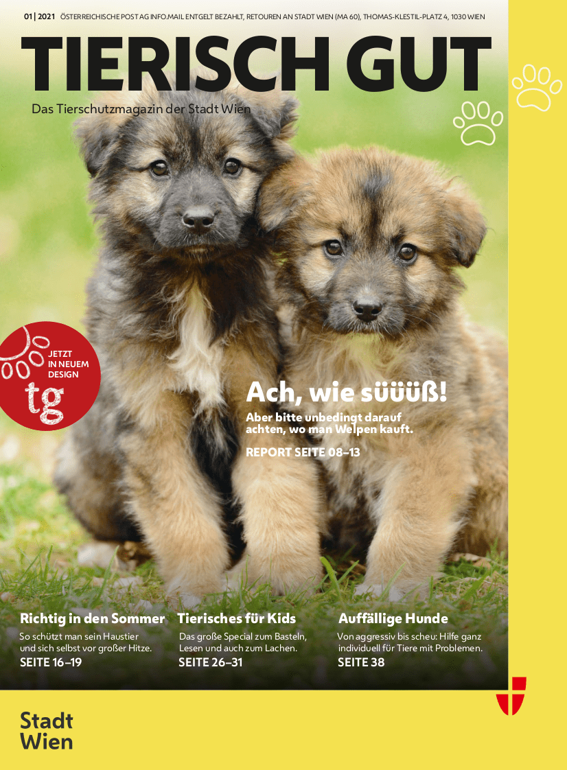 Tierisch Gut Cover Herbst 2020