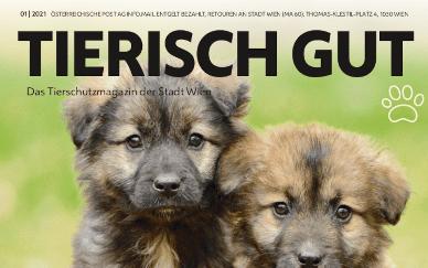 """Die neue Ausgabe von """"tierisch gut"""" ist da!"""