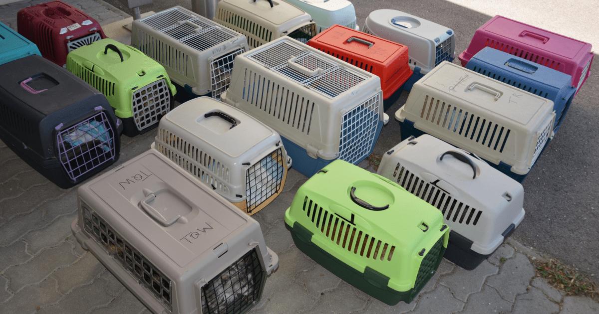 Ich unterstütze spezielle Projekte des TierQuarTiers Wien